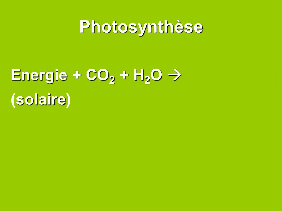 Photosynthèse Energie + CO 2 + H 2 O C 6 H 12 O 6 + O 2 solaire (solaire)