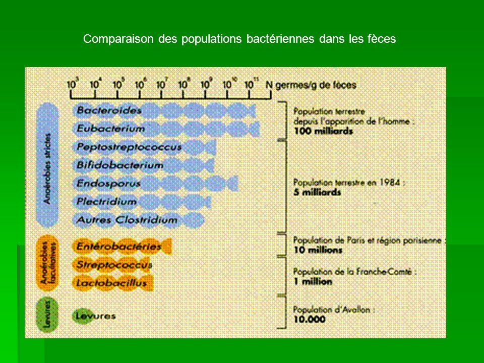 Comparaison des populations bactériennes dans les fèces