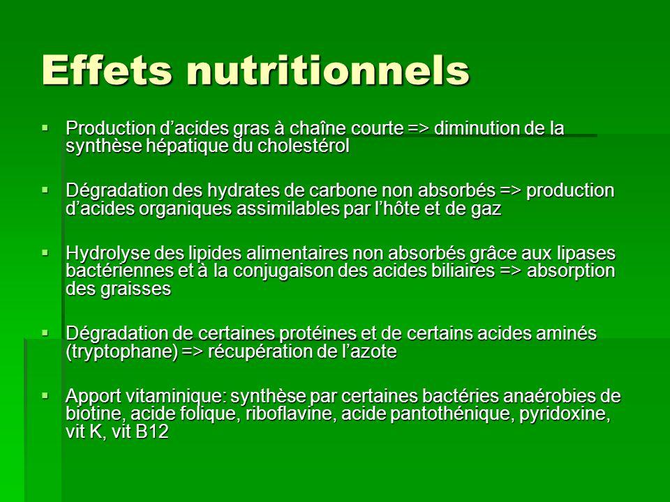Effets nutritionnels Production dacides gras à chaîne courte => diminution de la synthèse hépatique du cholestérol Production dacides gras à chaîne co