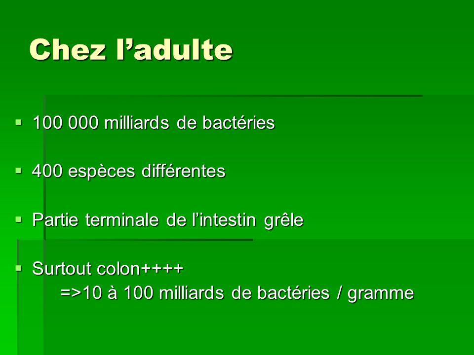 Chez ladulte 100 000 milliards de bactéries 100 000 milliards de bactéries 400 espèces différentes 400 espèces différentes Partie terminale de lintest