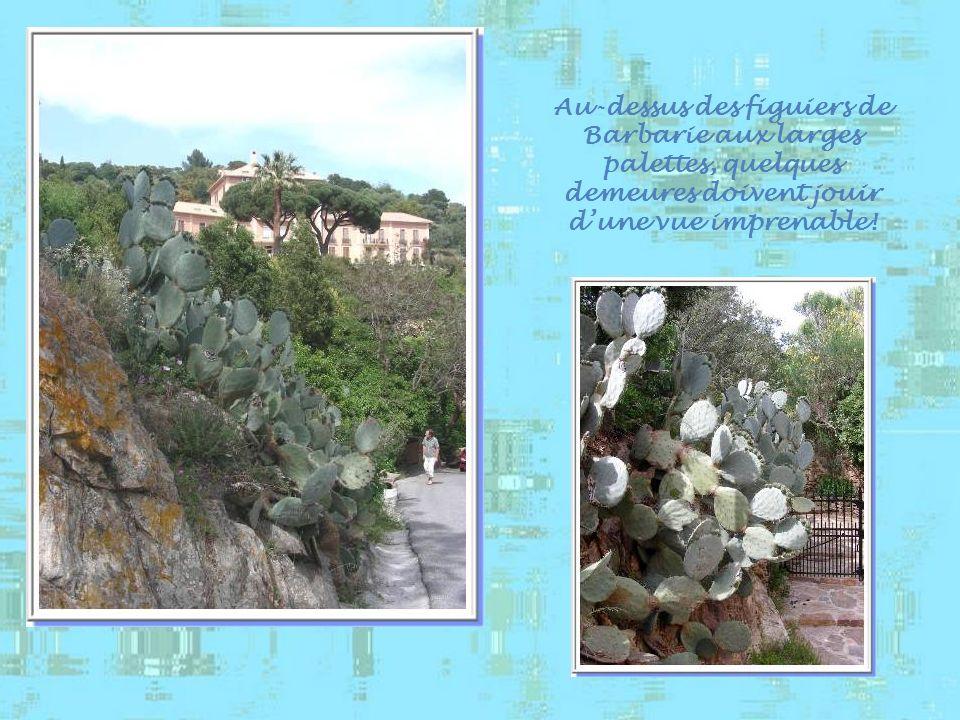 La promenade reprend en direction du point culminant de la colline : 104 m, là où se dresse le château. Avant dattaquer la montée, une jolie ruelle et