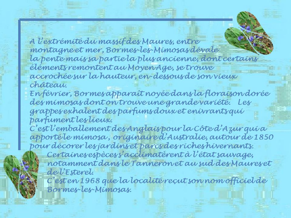 A lextrémité du massif des Maures, entre montagne et mer, Bormes-les-Mimosas dévale la pente mais sa partie la plus ancienne, dont certains éléments remontent au Moyen Age, se trouve accrochée sur la hauteur, en-dessous de son vieux château.