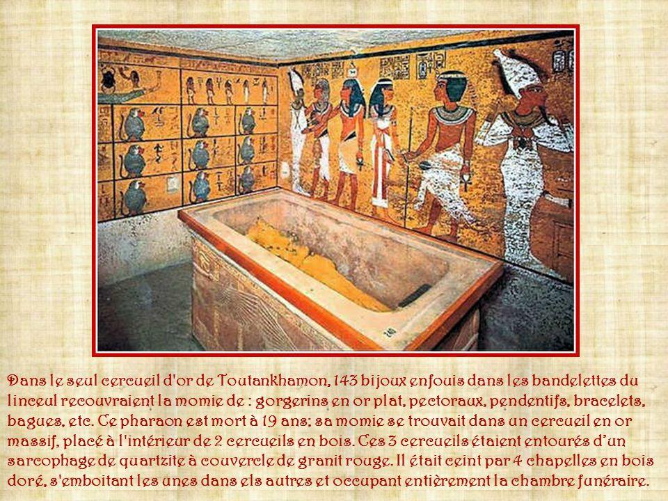 Lorsque le général Bonaparte mène son expédition en Egypte, en 1798, il sentoure de 210 scientifiques qui repèrent des lieux de conquête et qui étudie