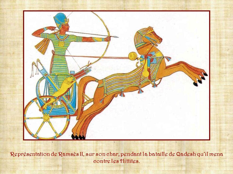 la barbe postiche est l'un des attributs que partage le pharaon avec les dieux et qui le différencie du commun des mortels. Cette « barbe », qui en fa