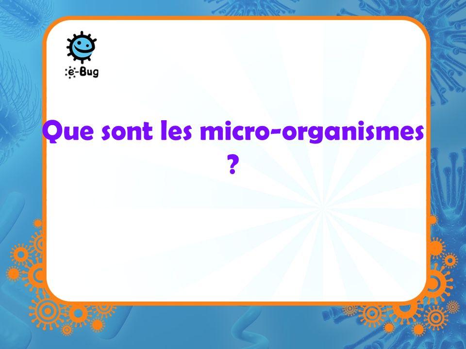 Que sont les micro-organismes ?
