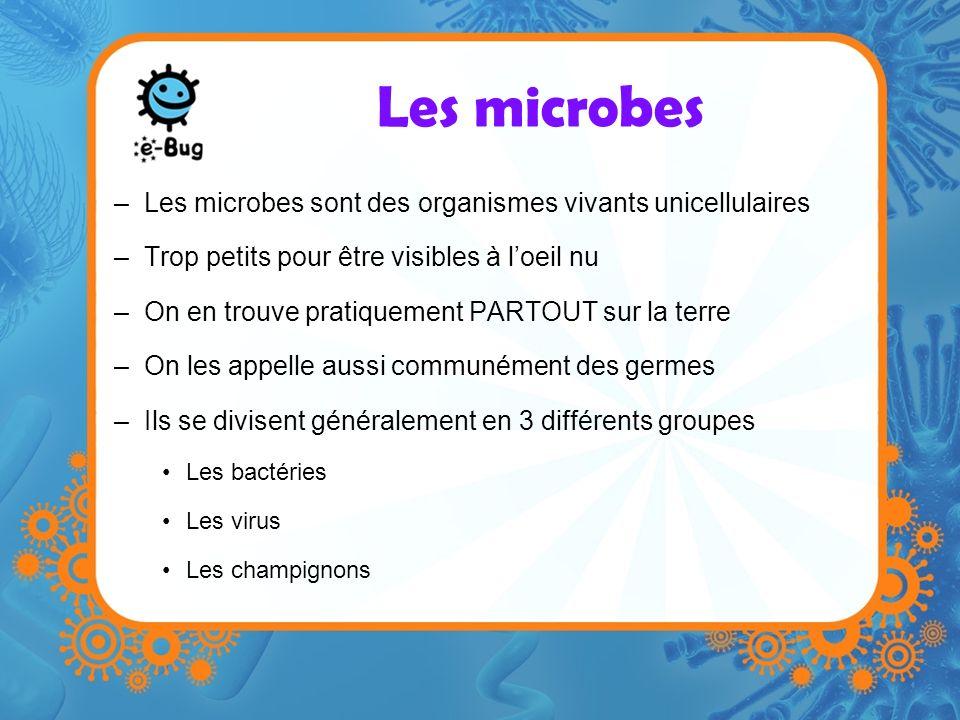 Les microbes –Les microbes sont des organismes vivants unicellulaires –Trop petits pour être visibles à loeil nu –On en trouve pratiquement PARTOUT sur la terre –On les appelle aussi communément des germes –Ils se divisent généralement en 3 différents groupes Les bactéries Les virus Les champignons