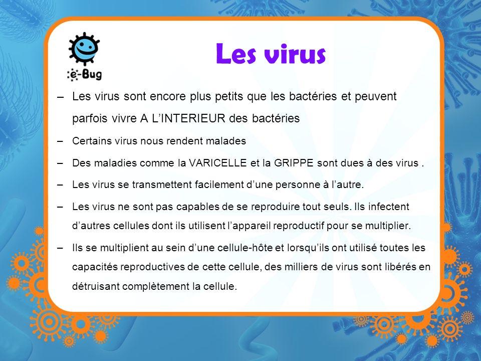 Les virus –Les virus sont encore plus petits que les bactéries et peuvent parfois vivre A LINTERIEUR des bactéries –Certains virus nous rendent malades –Des maladies comme la VARICELLE et la GRIPPE sont dues à des virus.