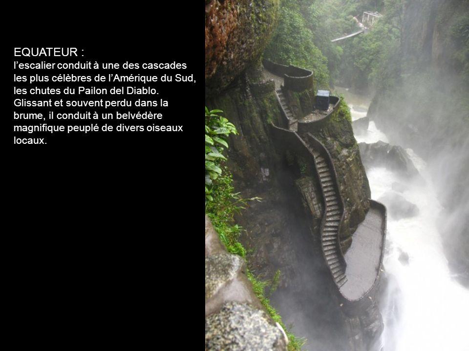 ALLEMAGNE, Wurtzburg en Bavière : Sorti dun conte conte de Hans Christian Andersen, sombre et magnifique, cet escalier mène à une cascade où chaque an