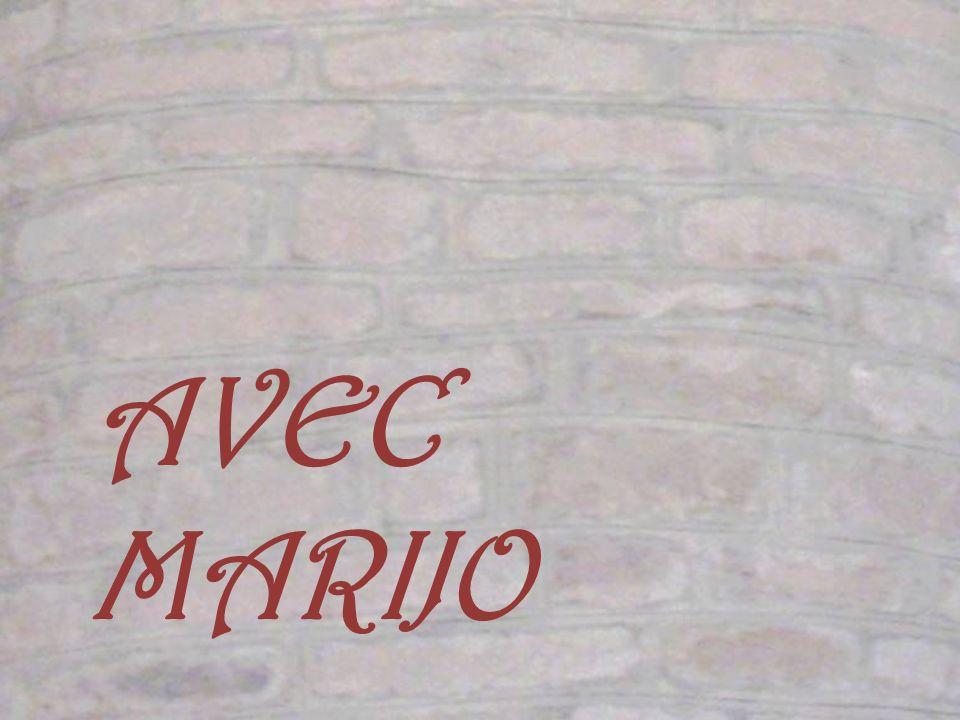 La façade ressemble à une sorte de donjon au mur percé darchères qui ponctuent lensemble de taches sombres contrastant avec le rosé de la pierre