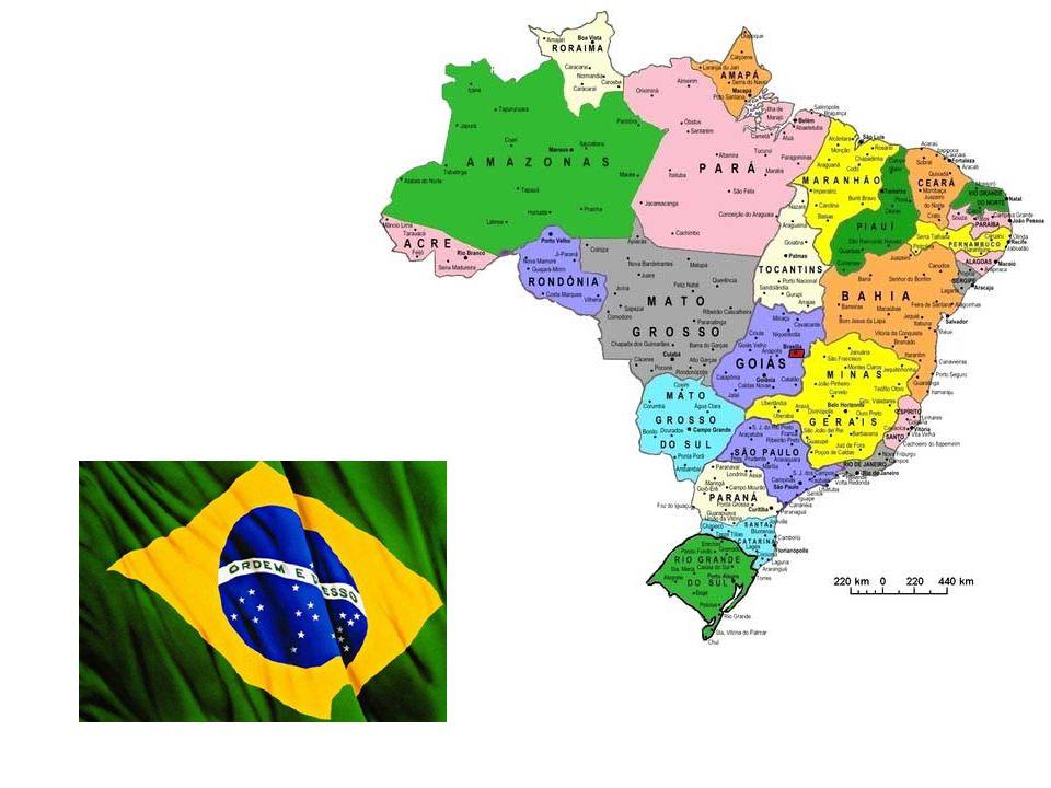 Huit ans après la découverte de l'Amérique par les Espagnols, les Portugais sont arrivés dans une zone où il y avait un arbre (Caesalpinia echinata) u