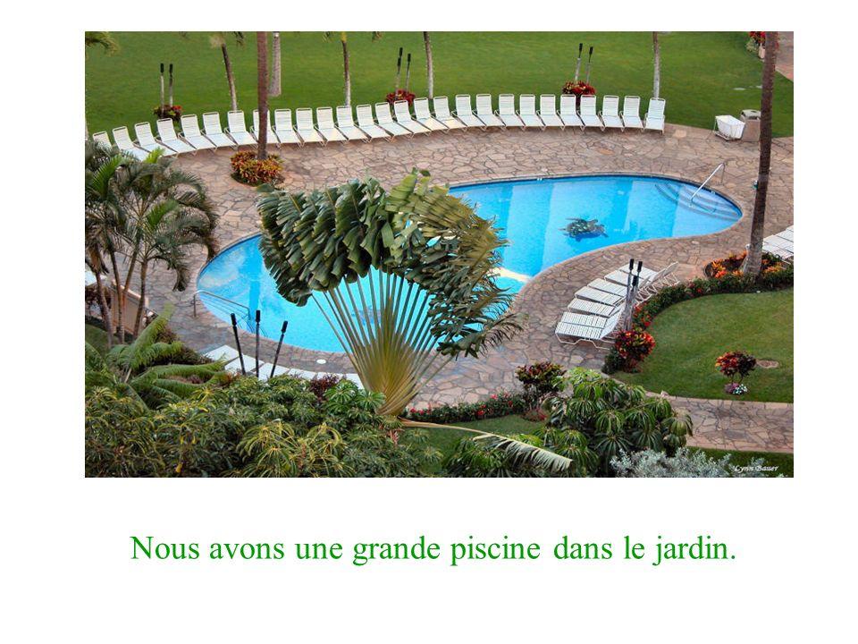 Nous avons une grande piscine dans le jardin.