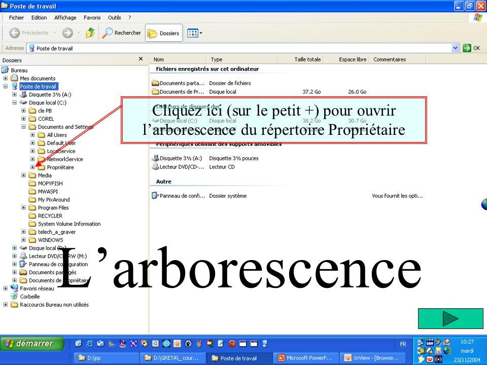 Larborescence Cliquez ici (sur le petit +) pour ouvrir larborescence du répertoire Propriétaire