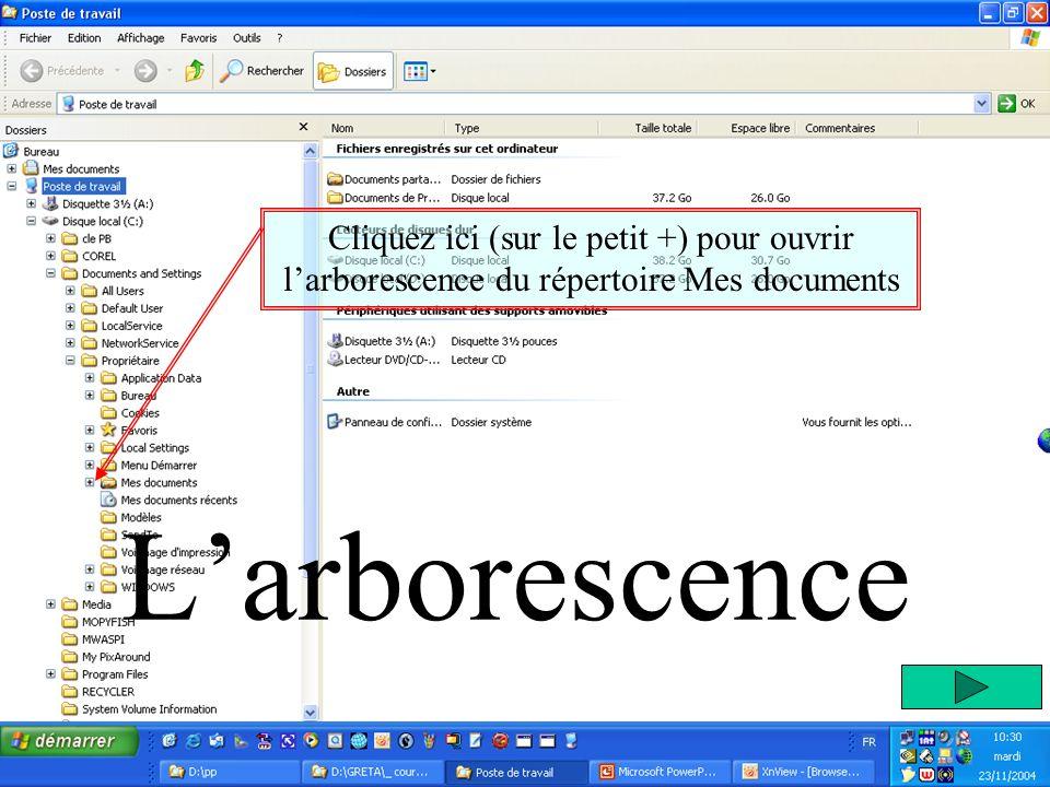Larborescence Cliquez ici (sur le petit +) pour ouvrir larborescence du répertoire Mes documents