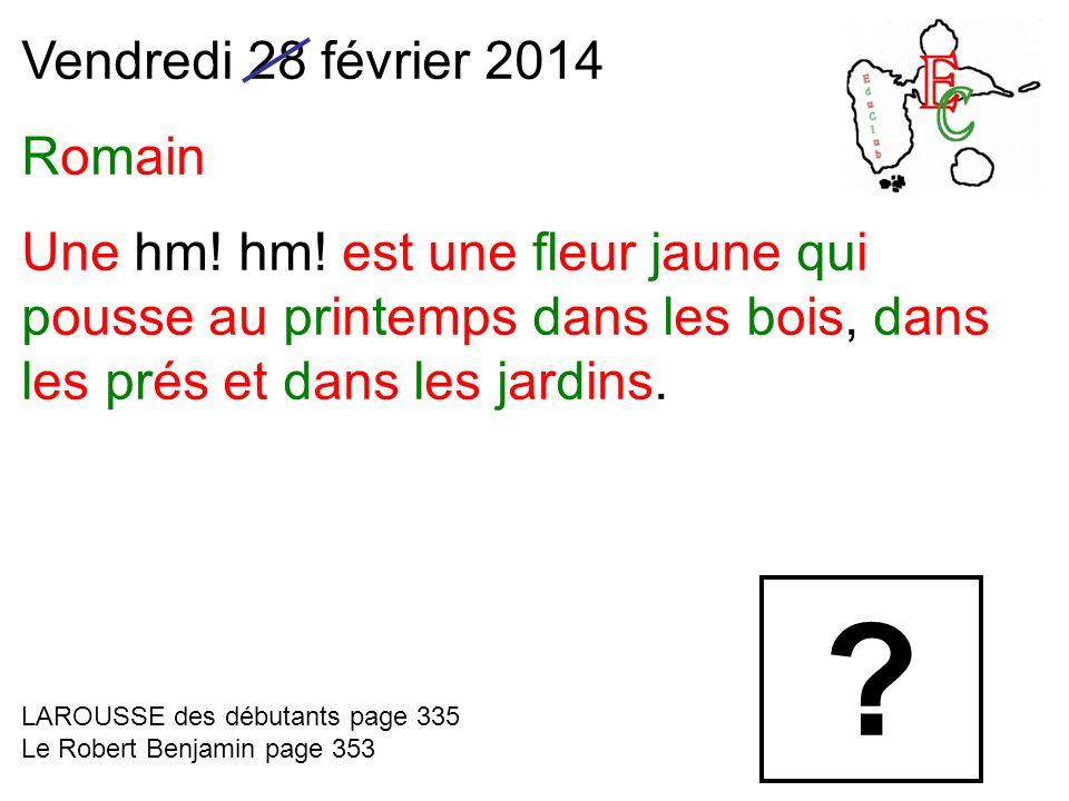 Vendredi 28 février 2014 Romain Une hm.hm.