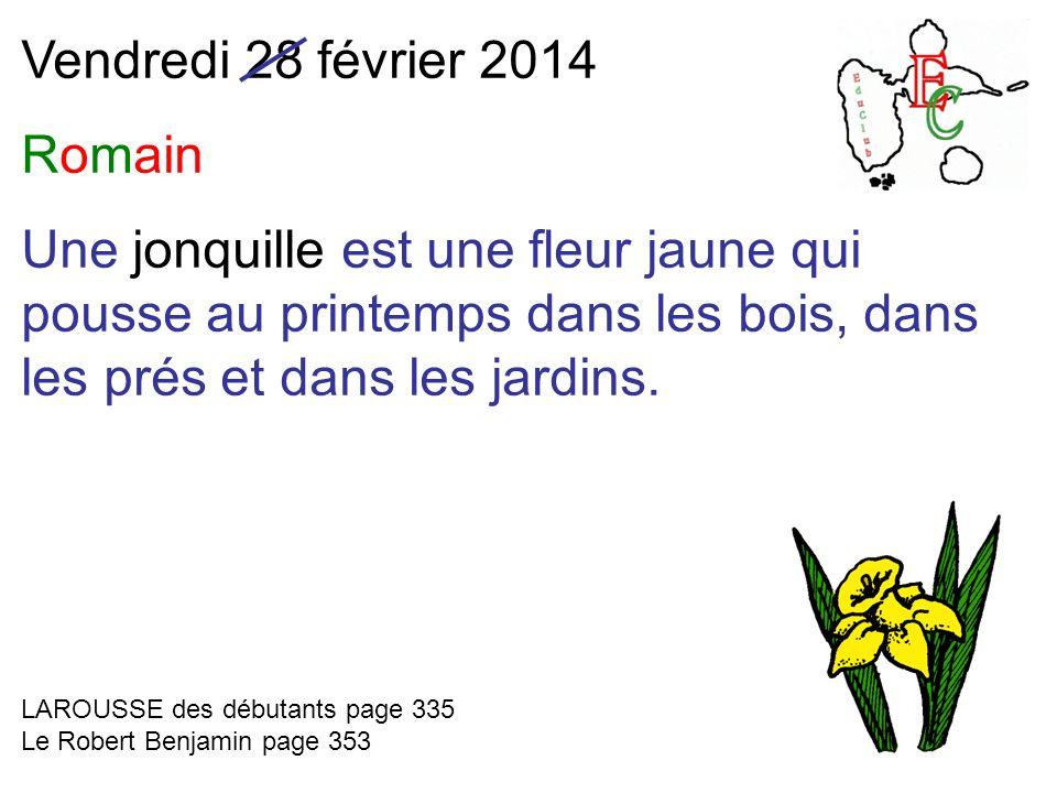 Vendredi 28 février 2014 Romain Une jonquille est une fleur jaune qui pousse au printemps dans les bois, dans les prés et dans les jardins. LAROUSSE d