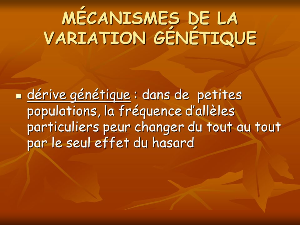 dérive génétique : dans de petites populations, la fréquence dallèles particuliers peur changer du tout au tout par le seul effet du hasard dérive gén