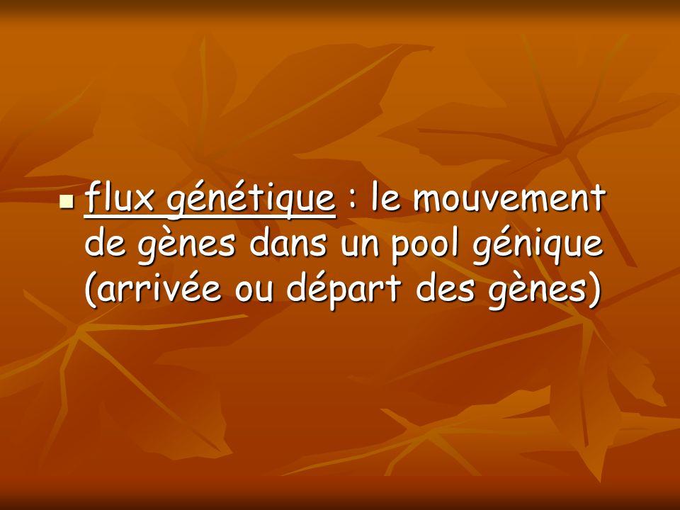 flux génétique : le mouvement de gènes dans un pool génique (arrivée ou départ des gènes) flux génétique : le mouvement de gènes dans un pool génique