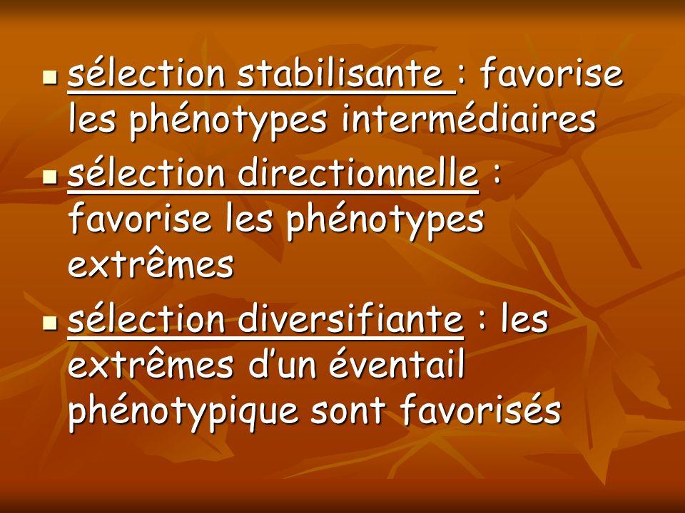 sélection stabilisante : favorise les phénotypes intermédiaires sélection stabilisante : favorise les phénotypes intermédiaires sélection directionnel