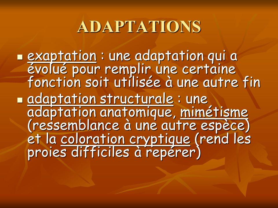 exaptation : une adaptation qui a évolué pour remplir une certaine fonction soit utilisée à une autre fin exaptation : une adaptation qui a évolué pou