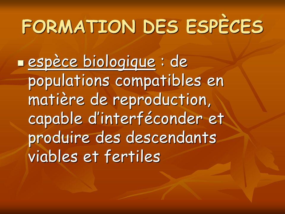 espèce biologique : de populations compatibles en matière de reproduction, capable dinterféconder et produire des descendants viables et fertiles espè