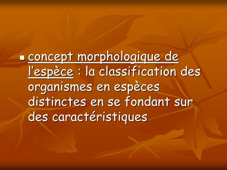 concept morphologique de lespèce : la classification des organismes en espèces distinctes en se fondant sur des caractéristiques concept morphologique