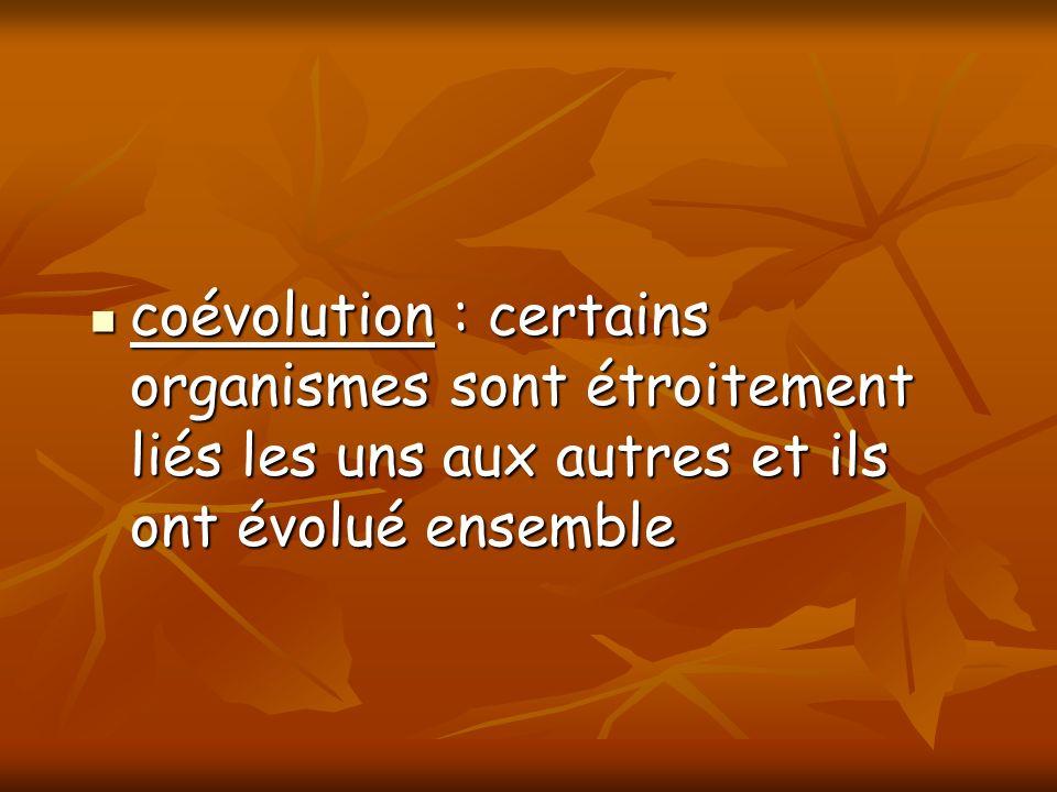 coévolution : certains organismes sont étroitement liés les uns aux autres et ils ont évolué ensemble coévolution : certains organismes sont étroiteme