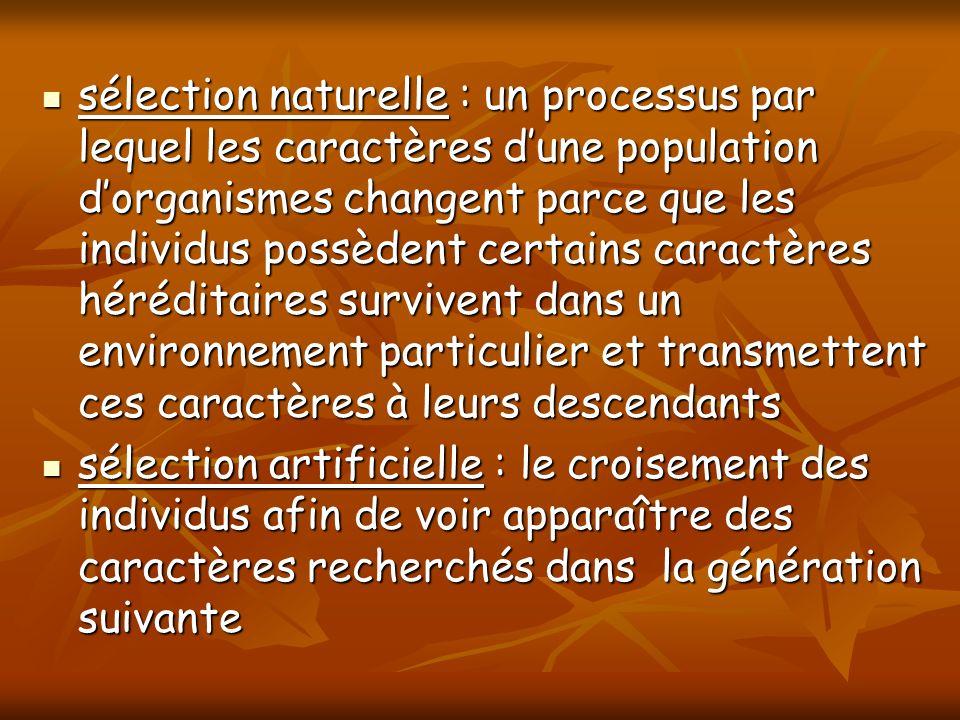 sélection naturelle : un processus par lequel les caractères dune population dorganismes changent parce que les individus possèdent certains caractère
