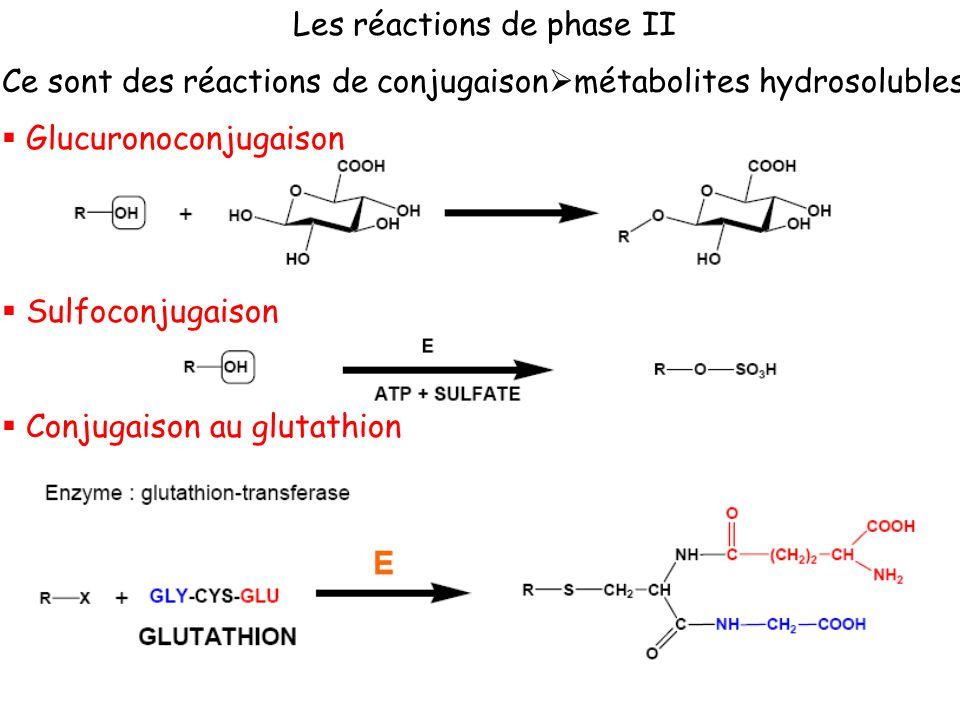 Les réactions de phase II Ce sont des réactions de conjugaison métabolites hydrosolubles Glucuronoconjugaison Sulfoconjugaison Conjugaison au glutathi