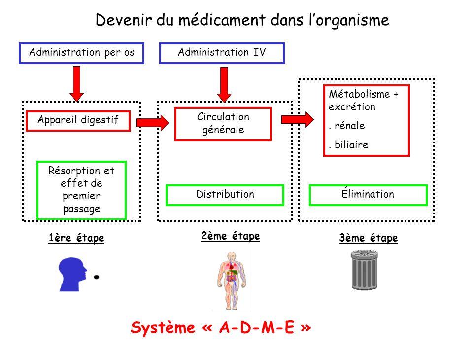 Devenir du médicament dans lorganisme Administration per os Appareil digestif Résorption et effet de premier passage Circulation générale Métabolisme