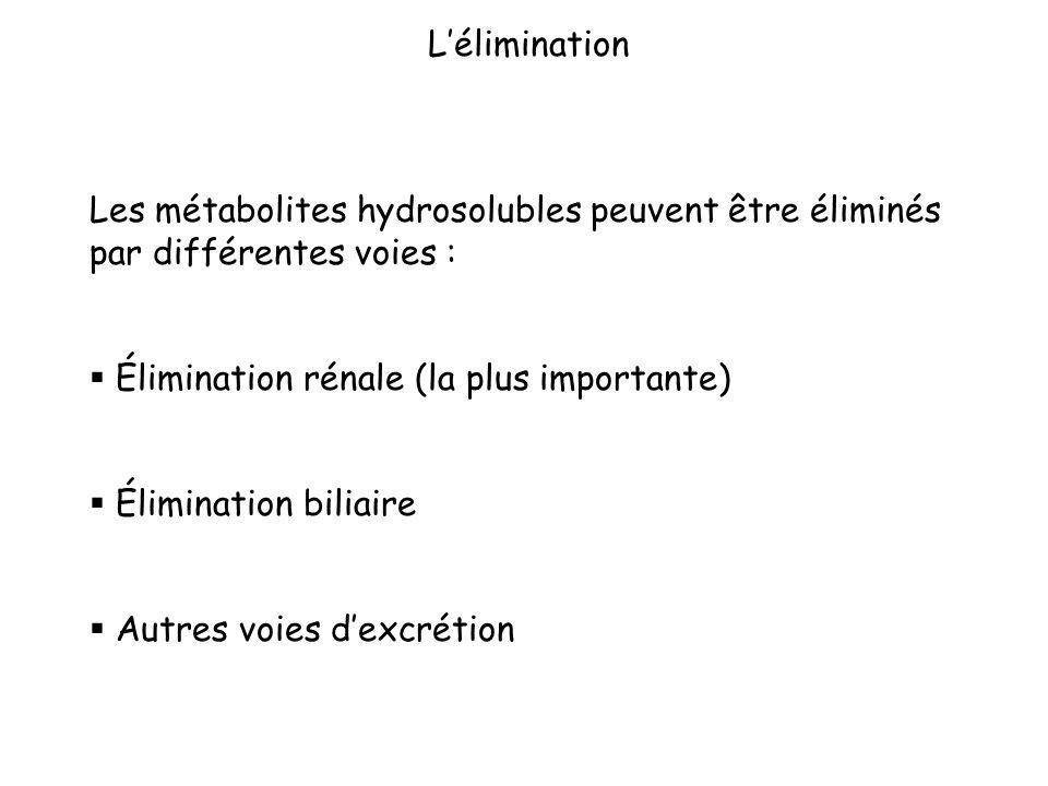 Les métabolites hydrosolubles peuvent être éliminés par différentes voies : Élimination rénale (la plus importante) Élimination biliaire Autres voies