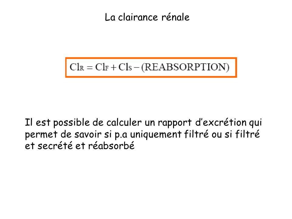 Il est possible de calculer un rapport dexcrétion qui permet de savoir si p.a uniquement filtré ou si filtré et secrété et réabsorbé