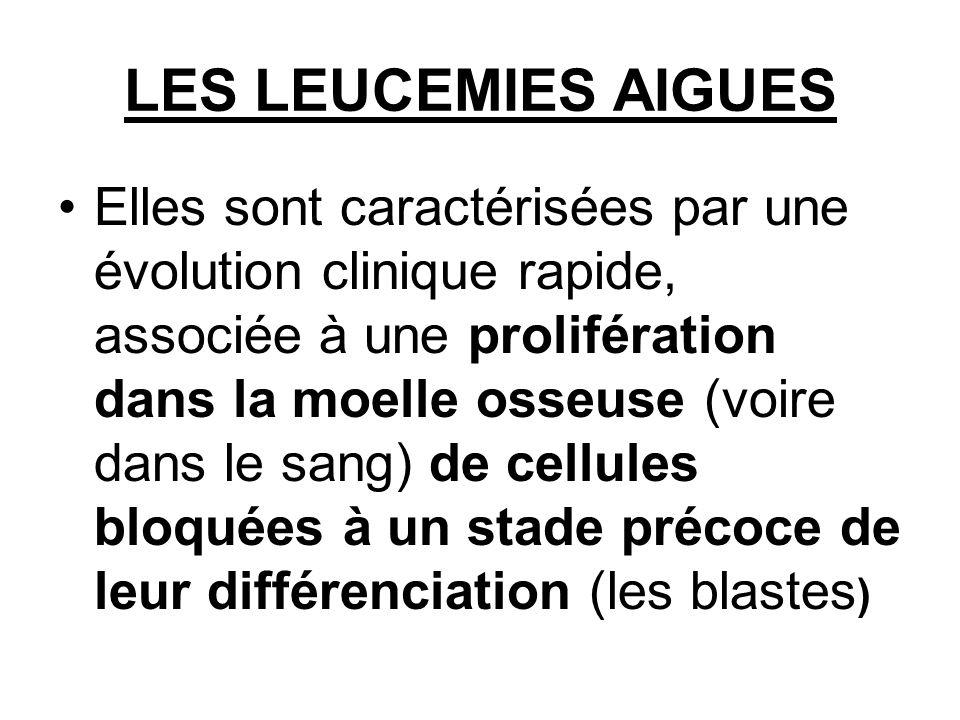 LES LEUCEMIES AIGUES Elles sont caractérisées par une évolution clinique rapide, associée à une prolifération dans la moelle osseuse (voire dans le sang) de cellules bloquées à un stade précoce de leur différenciation (les blastes )