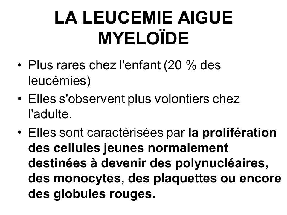 LA LEUCEMIE AIGUE MYELOÏDE Plus rares chez l enfant (20 % des leucémies) Elles s observent plus volontiers chez l adulte.