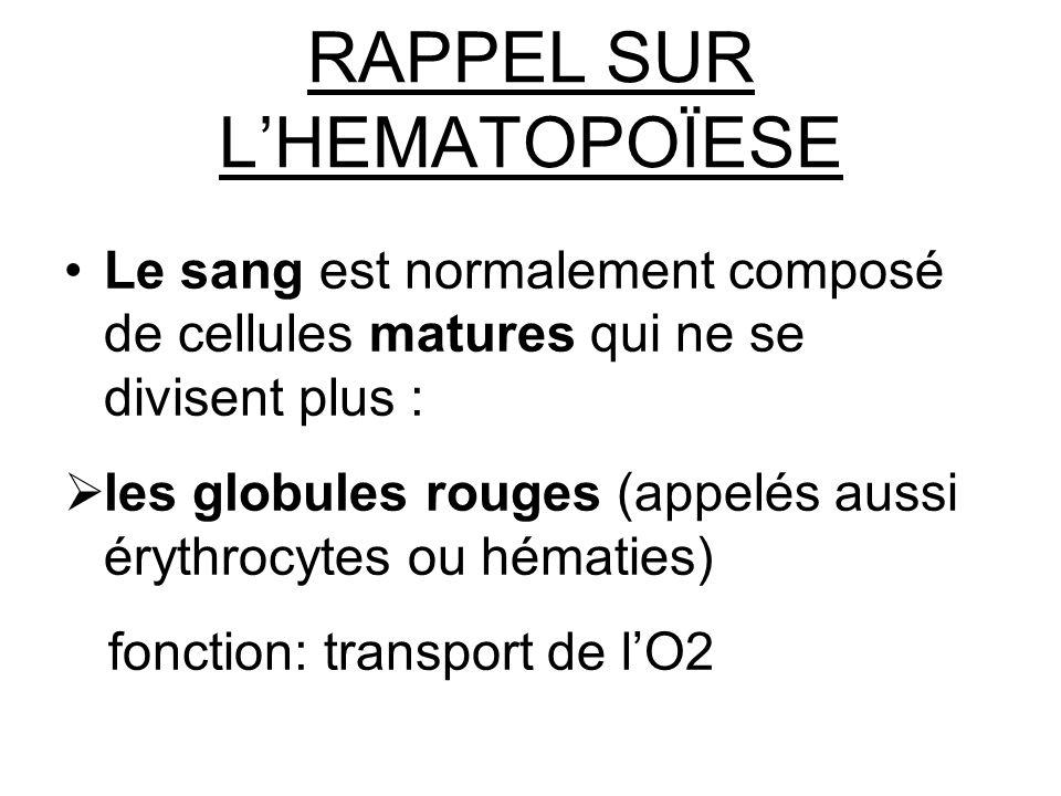 RAPPEL SUR LHEMATOPOÏESE Le sang est normalement composé de cellules matures qui ne se divisent plus : les globules rouges (appelés aussi érythrocytes ou hématies) fonction: transport de lO2