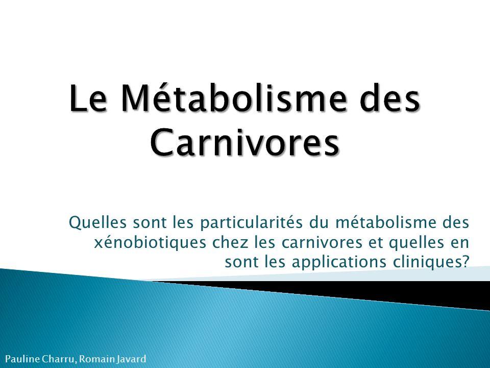 Quelles sont les particularités du métabolisme des xénobiotiques chez les carnivores et quelles en sont les applications cliniques? Pauline Charru, Ro