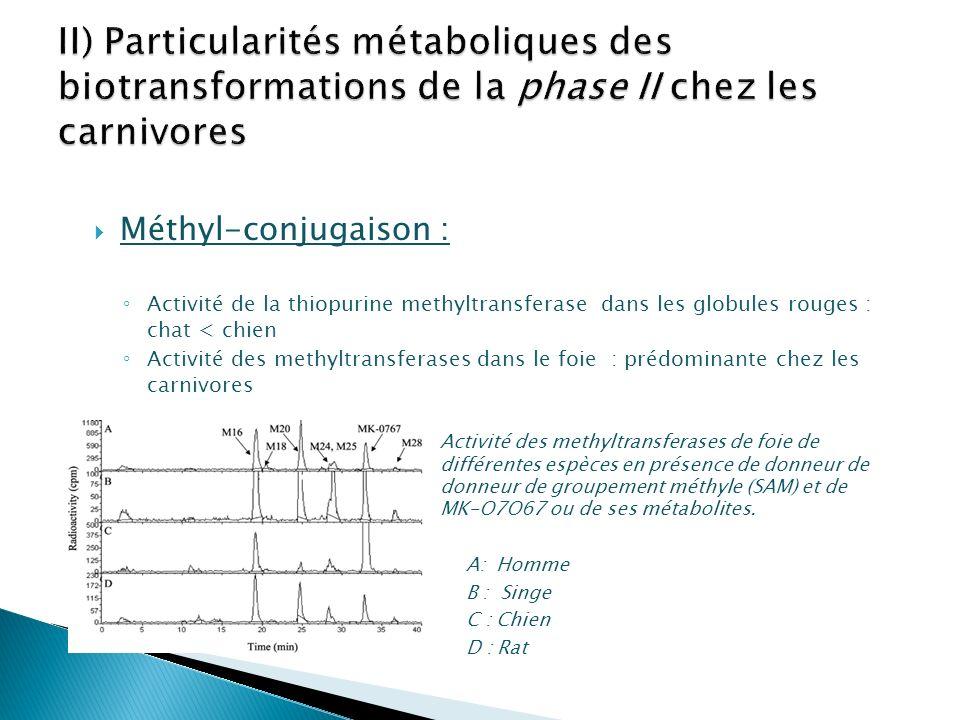 Méthyl-conjugaison : Activité de la thiopurine methyltransferase dans les globules rouges : chat < chien Activité des methyltransferases dans le foie