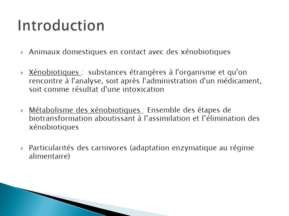 Utilisation de laspirine Métabolisé dans le foie par glucuronoconjugaison Chat : Absence de certaines enzymes du foie : glucuronyltransférase Conséquences sur lélimination Accumulation dans le foie => nécrose Métabolisme de lAspirine par les carnivores Biotransformations