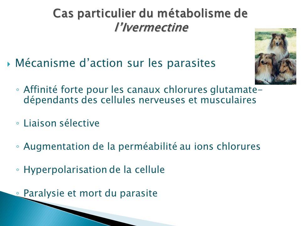 Mécanisme daction sur les parasites Affinité forte pour les canaux chlorures glutamate- dépendants des cellules nerveuses et musculaires Liaison sélec