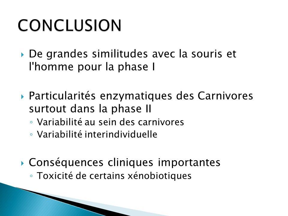 De grandes similitudes avec la souris et l'homme pour la phase I Particularités enzymatiques des Carnivores surtout dans la phase II Variabilité au se