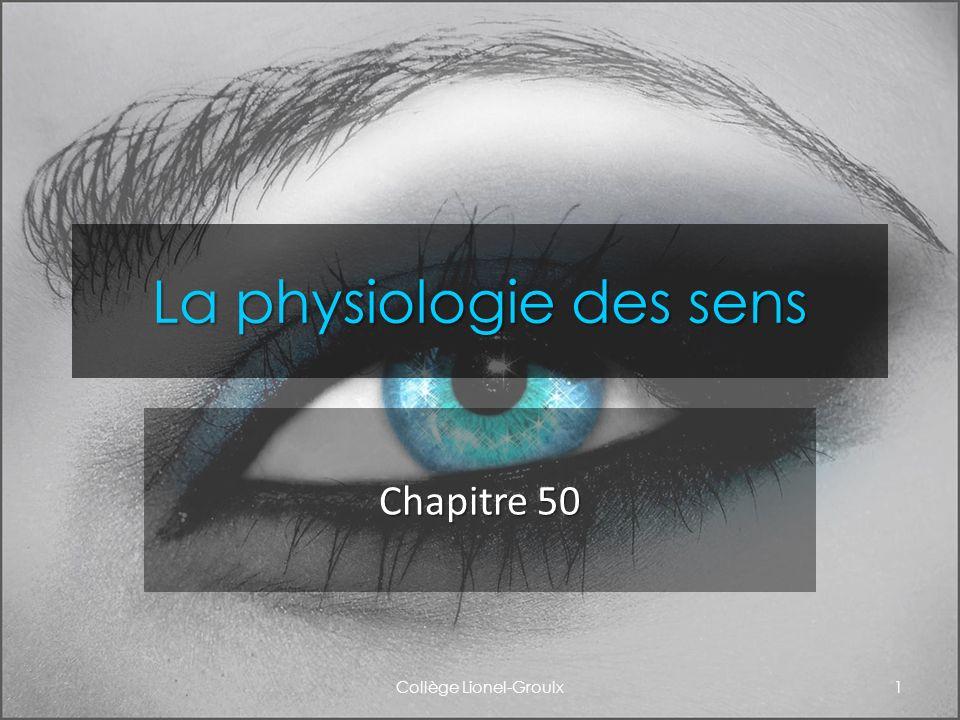 Les chimiorécepteurs: le goût et lodorat Collège Lionel-Groulx12