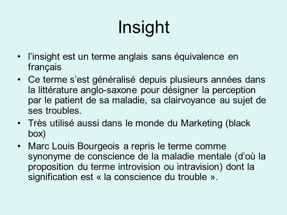 Insight linsight est un terme anglais sans équivalence en français Ce terme sest généralisé depuis plusieurs années dans la littérature anglo-saxone p