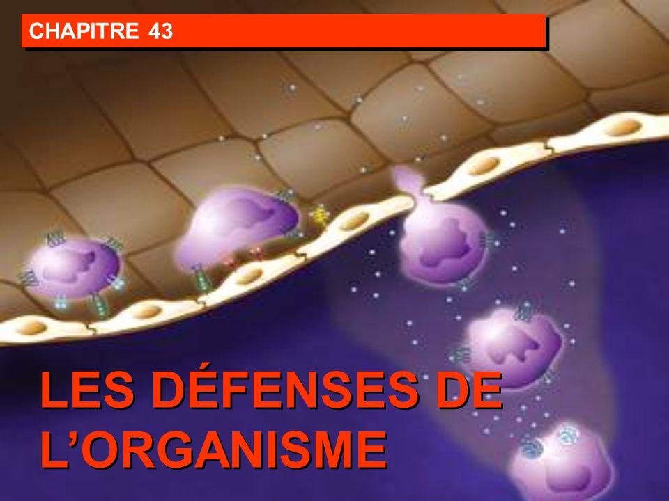 CHAPITRE 43 LES DÉFENSES DE LORGANISME