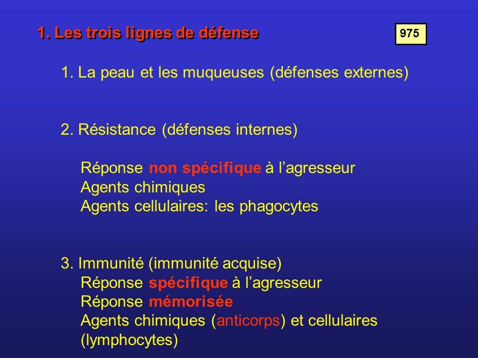 1. Les trois lignes de défense 1. La peau et les muqueuses (défenses externes) 2. Résistance (défenses internes) Réponse non spécifique à lagresseur A