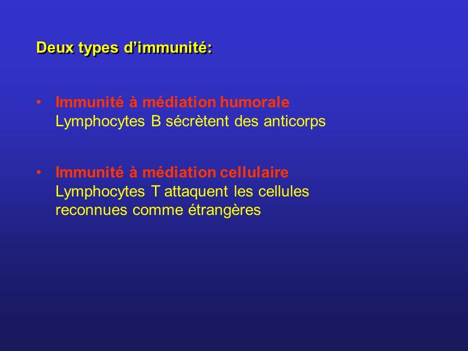 Deux types dimmunité: Immunité à médiation humorale Lymphocytes B sécrètent des anticorps Immunité à médiation cellulaire Lymphocytes T attaquent les