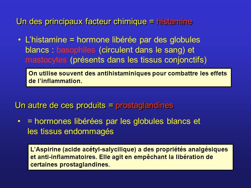 Lhistamine = hormone libérée par des globules blancs : basophiles (circulent dans le sang) et mastocytes (présents dans les tissus conjonctifs) Un des