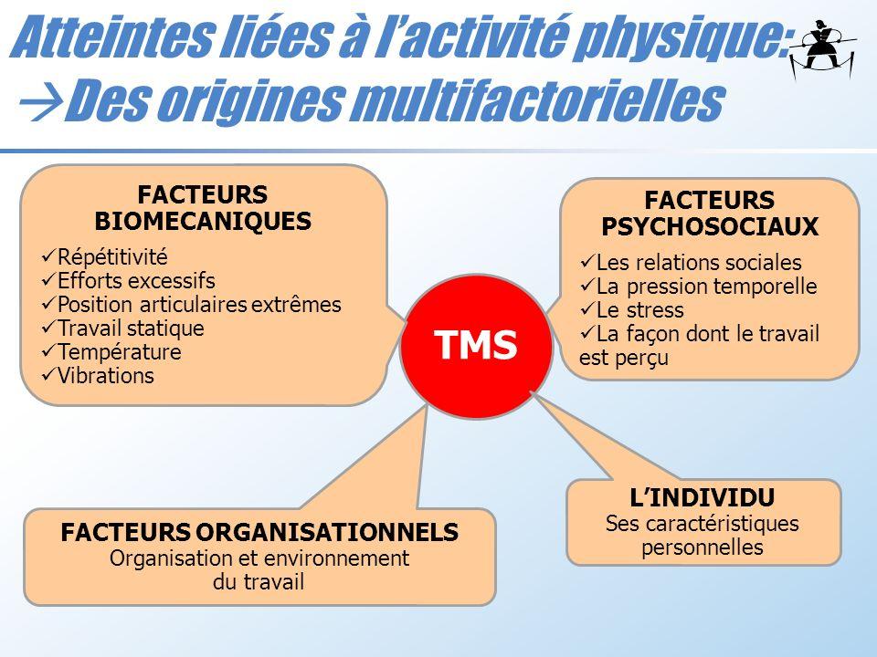 TMS FACTEURS BIOMECANIQUES Répétitivité Efforts excessifs Position articulaires extrêmes Travail statique Température Vibrations FACTEURS PSYCHOSOCIAU