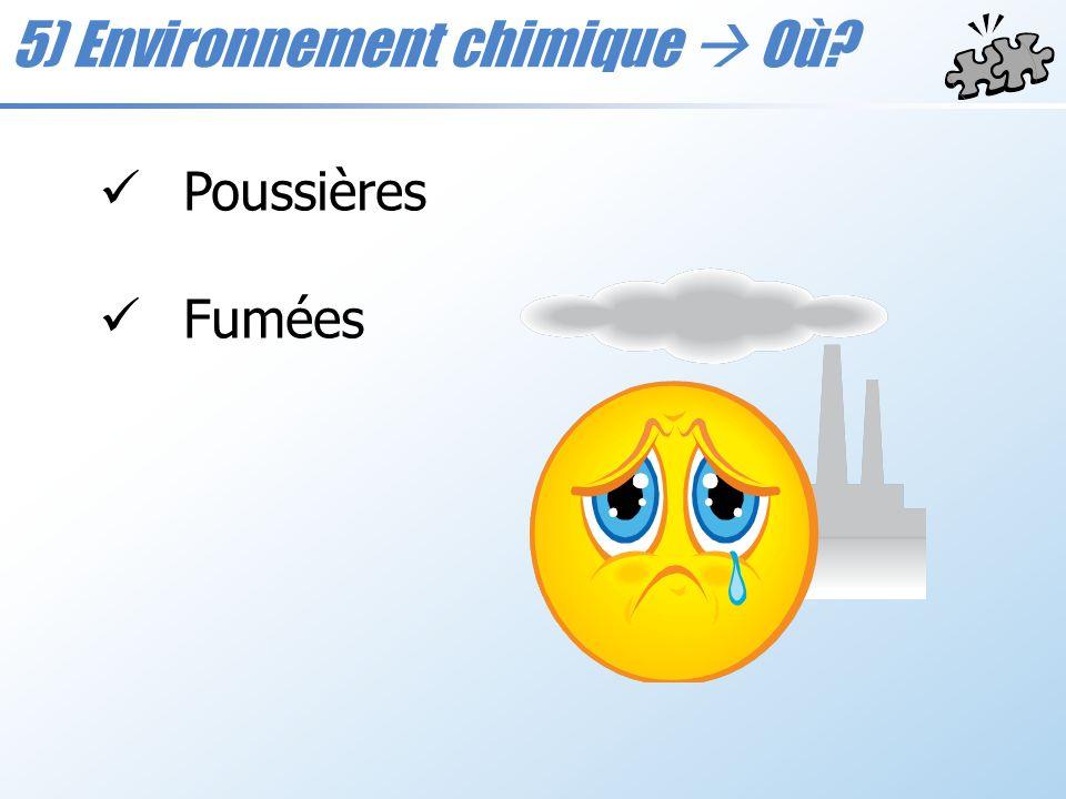 5) Environnement chimique Où? Poussières Fumées