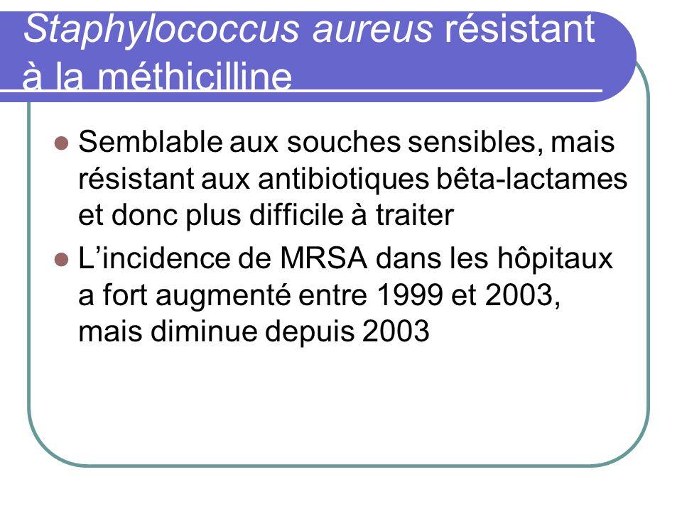Staphylococcus aureus résistant à la méthicilline Semblable aux souches sensibles, mais résistant aux antibiotiques bêta-lactames et donc plus diffici