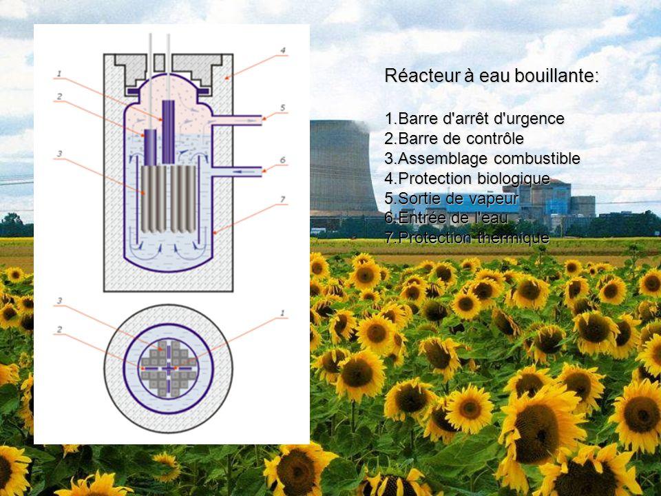 Réacteur à eau bouillante: 1.Barre d'arrêt d'urgence 2.Barre de contrôle 3.Assemblage combustible 4.Protection biologique 5.Sortie de vapeur 6.Entrée