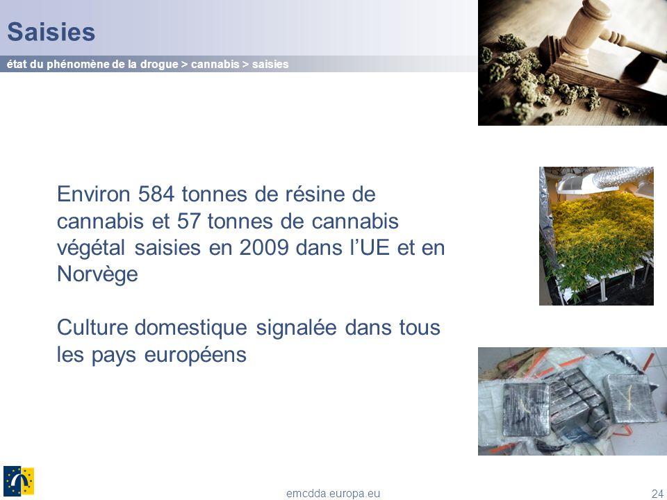 24 emcdda.europa.eu Saisies Environ 584 tonnes de résine de cannabis et 57 tonnes de cannabis végétal saisies en 2009 dans lUE et en Norvège Culture d